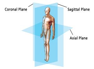 Spinal Planes